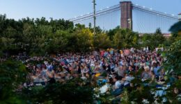 bk bridge park movies
