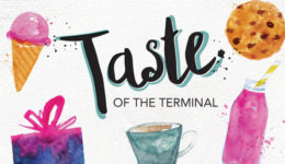 taste of the terminal