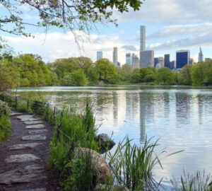 Good for the Mind, Body, and Soul: The Best NYC Parks to Visit in Every Borough
